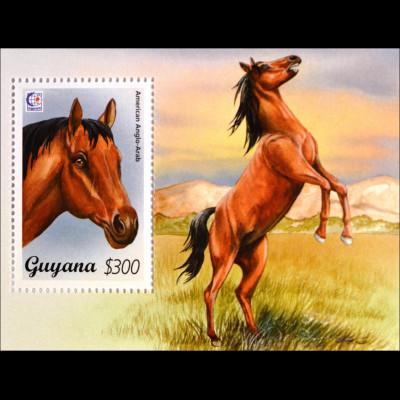 Pferderassen horses Anglo Araber Blockausgabe aus Guyana Pferdeblock