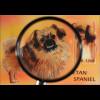 Hunderassen dogs Tibet Spaniel Blockausgabe aus Guyana