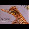 Vögel birds Tukan Regenbogentukan Südamerikanische Rohrdommel Blocksatz