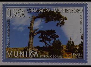 Montenegro 2015, Michel Nr. 373, Naturschutz, Umweltschutz, Schlangenhautkiefer