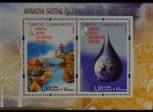 Türkei Turkey 2013 Block 101, 1. Eurasisches soziales Unternehmensforum Istanbul